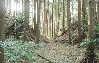 甲賀郡中惣遺跡群